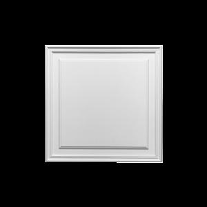 panel D503