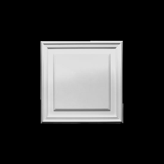 panel D506